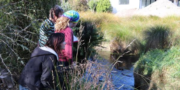 Water quality monitoring volunteers