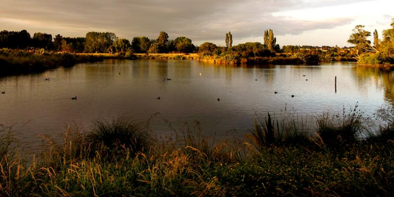 Brooklands Lagoon at Sunset